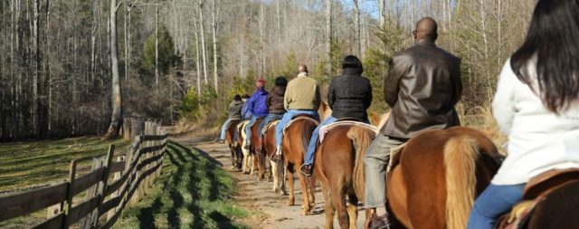 Horseback Riding and Guided Trail Rides