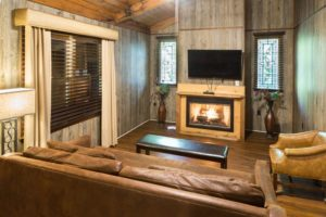 Living Room-2 BDRM Cabin